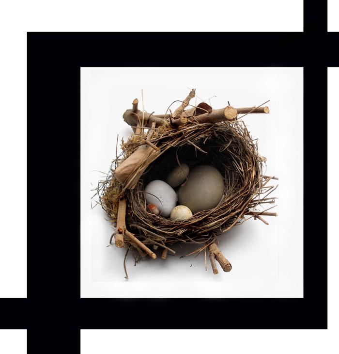 _nid de pierres